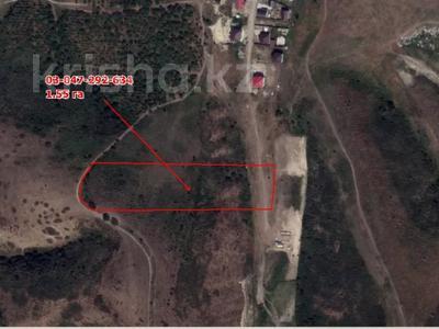 Участок 1.55 га, Кыргауылды за 7 млн 〒 — фото 3