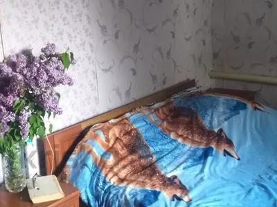 7-комнатный дом, 120 м², 14.5 сот., Рыскулова 281 — Суворова за 25 млн 〒 в Талгаре — фото 3