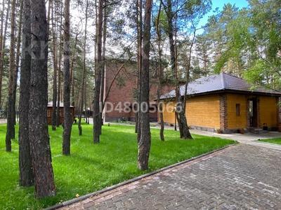 11-комнатный дом посуточно, 1000 м², Green Village за 15 000 〒 в Бурабае — фото 20