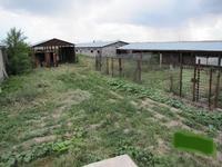 Продам крестьянское хозяйство