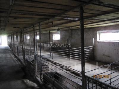 Продам крестьянское хозяйство за 38 млн 〒 в Остемире — фото 4