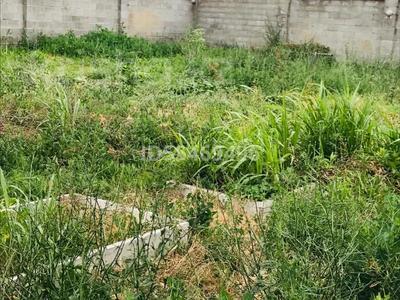 Кондитерский цех ( дом) за 18.8 млн 〒 в Бесагаш (Дзержинское) — фото 20