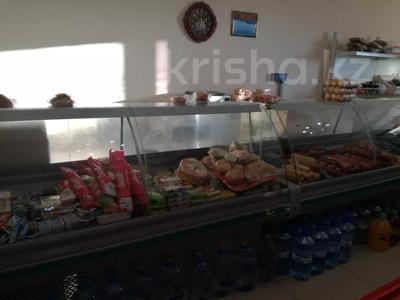 Магазин площадью 575.6 м², Кашаубаева 139 за 82 млн 〒 в Нур-Султане (Астана), Есильский р-н — фото 20
