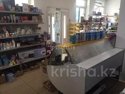 Магазин площадью 320 м², Рыскулова 286 — Менделеева за 55 млн 〒 в Талгаре — фото 10