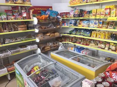 Магазин площадью 320 м², Рыскулова 286 — Менделеева за 55 млн 〒 в Талгаре — фото 8