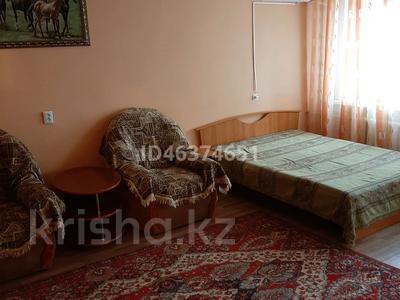 1-комнатная квартира, 30 м² посуточно, Шашубая 8Г за 5 000 〒 в Балхаше — фото 6
