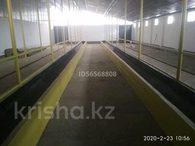 Промбаза 130 га, Сары Булак за 95 млн 〒 в Талдыкоргане — фото 13