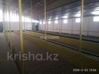Промбаза 130 га, Сары Булак за 95 млн 〒 в Талдыкоргане — фото 5