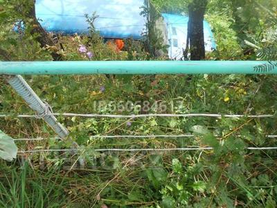 Дача с участком в 8 сот., Кок Лай Сай за 2.2 млн 〒 в Кок-лай-сае — фото 11