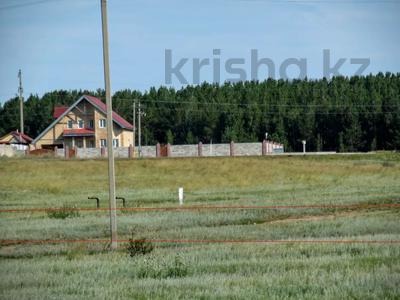 Участок 30 соток, Акмолинская обл. за 6.2 млн 〒 — фото 58