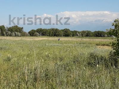 Участок 6 соток, М. Туймебаев за 1.3 млн 〒 — фото 8