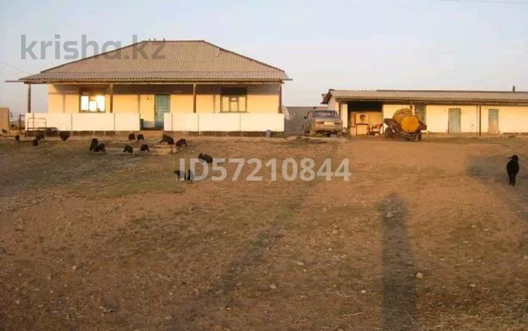 Животноводческий комплекс за 35 млн 〒 в Шымкенте, Аль-Фарабийский р-н