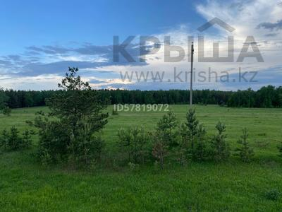 Участок 10 соток, Щучинск за 7 млн 〒 — фото 4