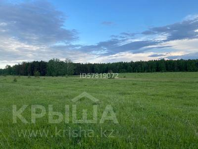 Участок 10 соток, Щучинск за 7 млн 〒 — фото 5