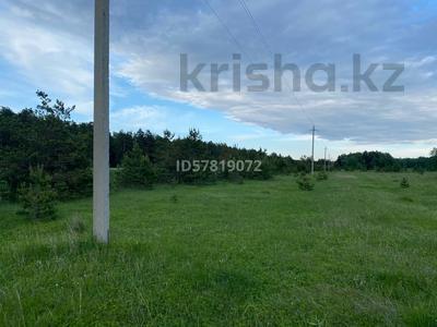 Участок 10 соток, Щучинск за 7 млн 〒 — фото 6