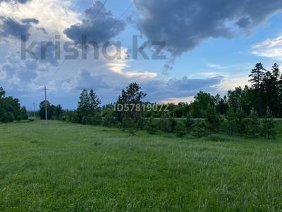 Участок 10 соток, Щучинск за 7 млн 〒 — фото 7