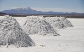 Соляное месторождение, соляной карьер за 255 млн 〒 в Туркестанской обл.