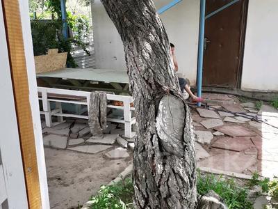 Дача с участком в 7 сот., 7 12 за 6 млн 〒 в Капчагае — фото 23