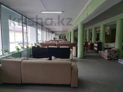 Магазин площадью 1266 м², 342квартал 7 за 250 млн 〒 в Семее — фото 2