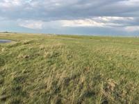Ферма фазенда за 39.5 млн 〒 в Нур-Султане (Астане), р-н Байконур