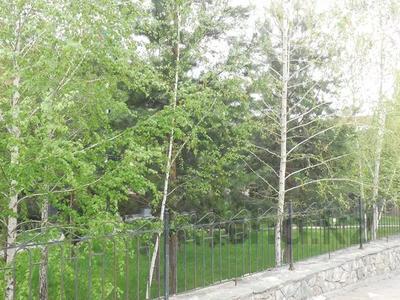 7-комнатный дом, 750 м², 20 сот., Жамакаева за 980 млн 〒 в Алматы, Медеуский р-н — фото 4