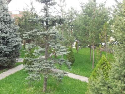 7-комнатный дом, 750 м², 20 сот., Жамакаева за 980 млн 〒 в Алматы, Медеуский р-н — фото 8