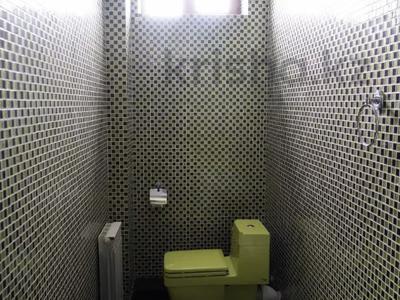 6-комнатный дом, 350 м², 7.5 сот., мкр Алатау за 110 млн 〒 в Алматы, Бостандыкский р-н — фото 12
