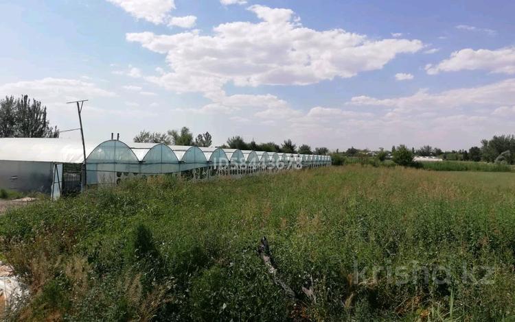 Теплица за 35 млн 〒 в Сарыагаш