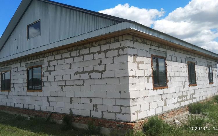 5-комнатный дом, 170 м², 9 сот., Школьная 15 за 9 млн 〒 в Алтын-Дала