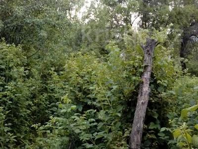 Участок 68 соток, Бескайнар (Горный Садовод) за 45 млн 〒 — фото 9