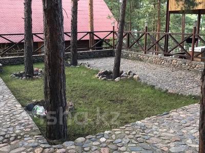 7-комнатный дом, 250 м², 25 сот., Борок за 60 млн 〒 в Новой бухтарме — фото 15