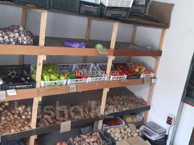 Магазин площадью 265 м², Гагарина 111 за 54.2 млн 〒 в Талгаре — фото 4