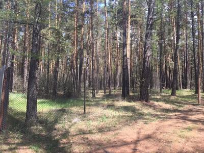Участок 25 соток, Микрорайон БСХТ 3 за 50 млн 〒 в Щучинске — фото 9