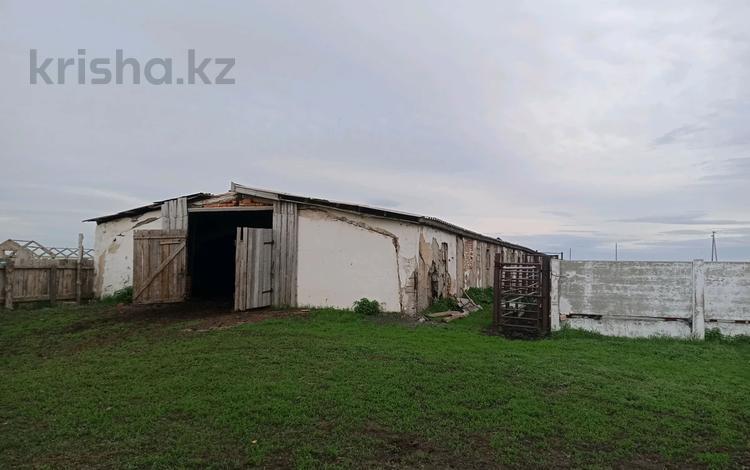 животноводческая база за 17 млн 〒 в Боровском