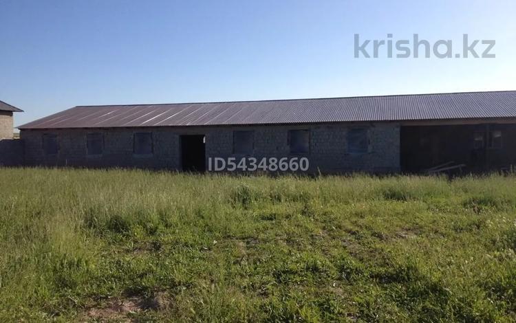 Фазенда (мал кора) за 17.5 млн 〒 в Шымкенте, Абайский р-н
