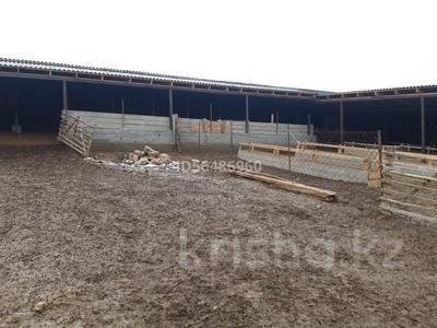 Фазенда за 30 млн 〒 в Таразе — фото 2