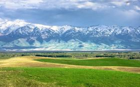 Участок 4 га, Ташкентская за 138 млн 〒 в Айтей