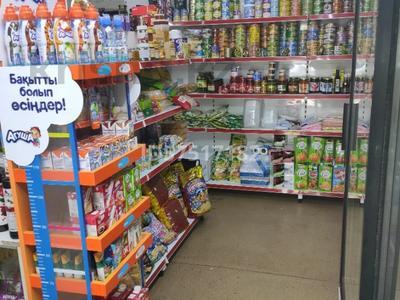 Магазин площадью 40 м², мкр Коктем-1, Маркова 22 — Габдуллина за 350 000 〒 в Алматы, Бостандыкский р-н — фото 8
