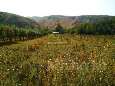Яблочный сад, Фазенда помещика! за 98 млн 〒 в Есик — фото 2