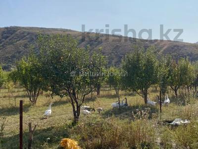 Яблочный сад, Фазенда помещика! за 98 млн 〒 в Есик — фото 32