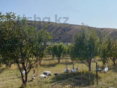 Яблочный сад, Фазенда помещика! за 98 млн 〒 в Есик — фото 39
