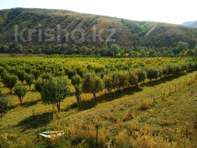 Яблочный сад, Фазенда помещика! за 98 млн 〒 в Есик