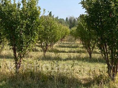 Яблочный сад, Фазенда помещика! за 98 млн 〒 в Есик — фото 45
