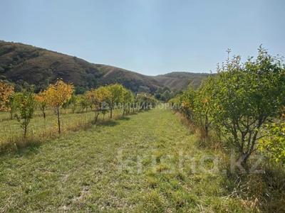 Яблочный сад, Фазенда помещика! за 98 млн 〒 в Есик — фото 48