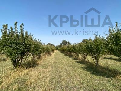 Яблочный сад, Фазенда помещика! за 98 млн 〒 в Есик — фото 49