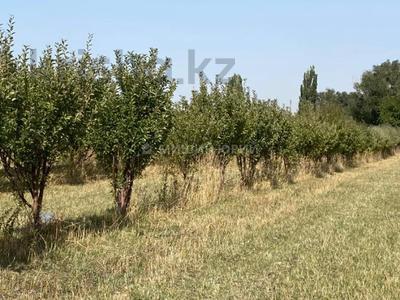 Яблочный сад, Фазенда помещика! за 98 млн 〒 в Есик — фото 52