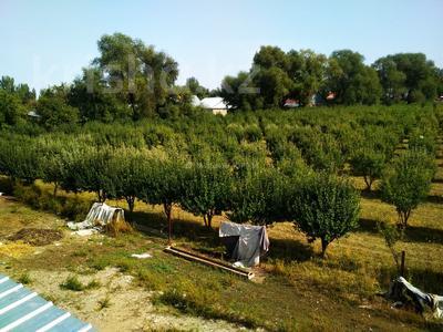 Яблочный сад, Фазенда помещика! за 98 млн 〒 в Есик — фото 7
