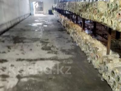 Действующий грибной бизнес склады за 50 млн 〒 в Алматы, Алатауский р-н — фото 9