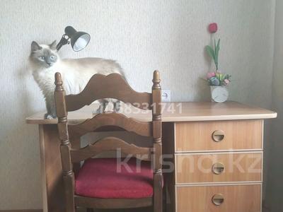 1 комната, 11 м², Ермекова 83 за 30 000 〒 в Караганде, Казыбек би р-н — фото 4