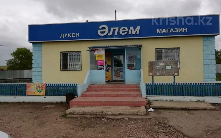 Магазин площадью 150 м², С. Чаглинка за 18 млн 〒 в
